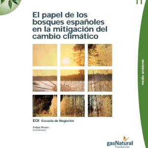 el papel de los bosques