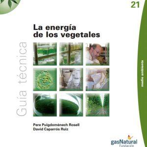 energia de los vegetales