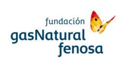 logo fundacion gas natural fenosa