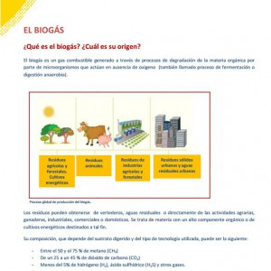 el biogas