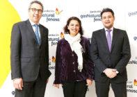 La Fundación Gas Natural Fenosa analiza en Sevilla las nuevas tecnologías de almacenamiento de electricidad