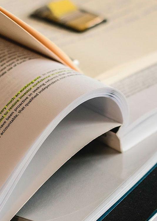Documentos Información Económica Transparencia