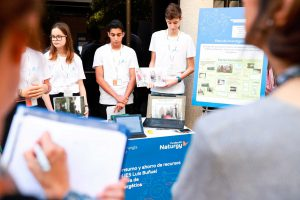 Efigy Technology Competition