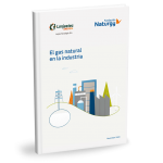 Las instalaciones de cogeneración necesitan un plan de renovación para mantener su contribución a los objetivos de descarbonización y a la competitividad de la industria