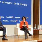 El 79% de los bonos verdes emitidos en España en 2020 se destinó a inversión en energías renovables y eficiencia energética