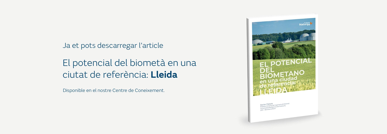 D_slider_biometano_CA