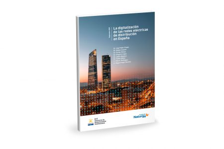 informe-digitalizacion